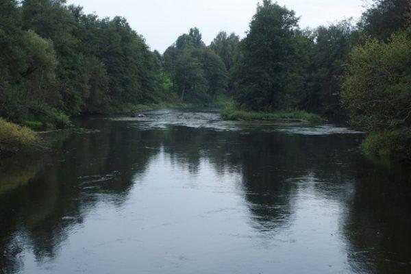owimy_na_piknych_litewskich_rzekach_20181002_1614859823